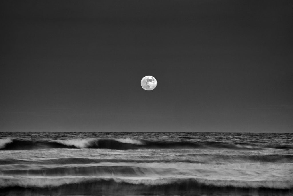 Hunter Moon Rise